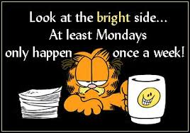 Garfield and I have a lot in common!